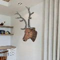 vidaXL Deer Head Wall Mounted Decoration - 240867 New