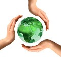 Environmental Assessment Company in Australia