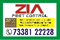 Zia  Pest Control Services  | 7338122228 |  Cockroach | Bed Bug Service | 750