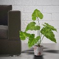 Artificial Foliage Plant in Pot for sale